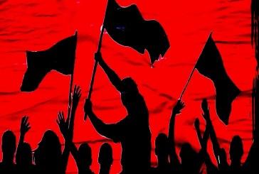 الثورات والطفيليات