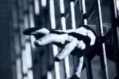 الإصلاح الإسلامي والاعتقال التعسفي