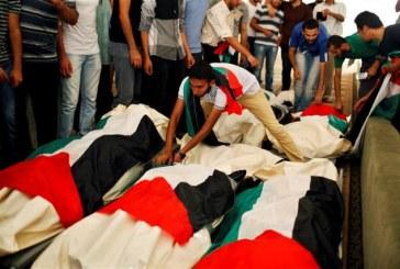 حقوق الإنسان من مصر إلى غزة